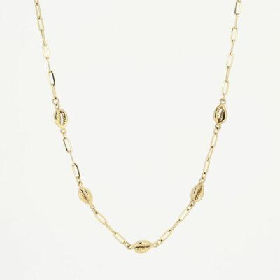 Halskette Muschel Gold